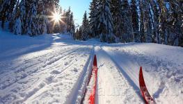 """База """"Дубки"""" - освещенная лыжная трасса"""
